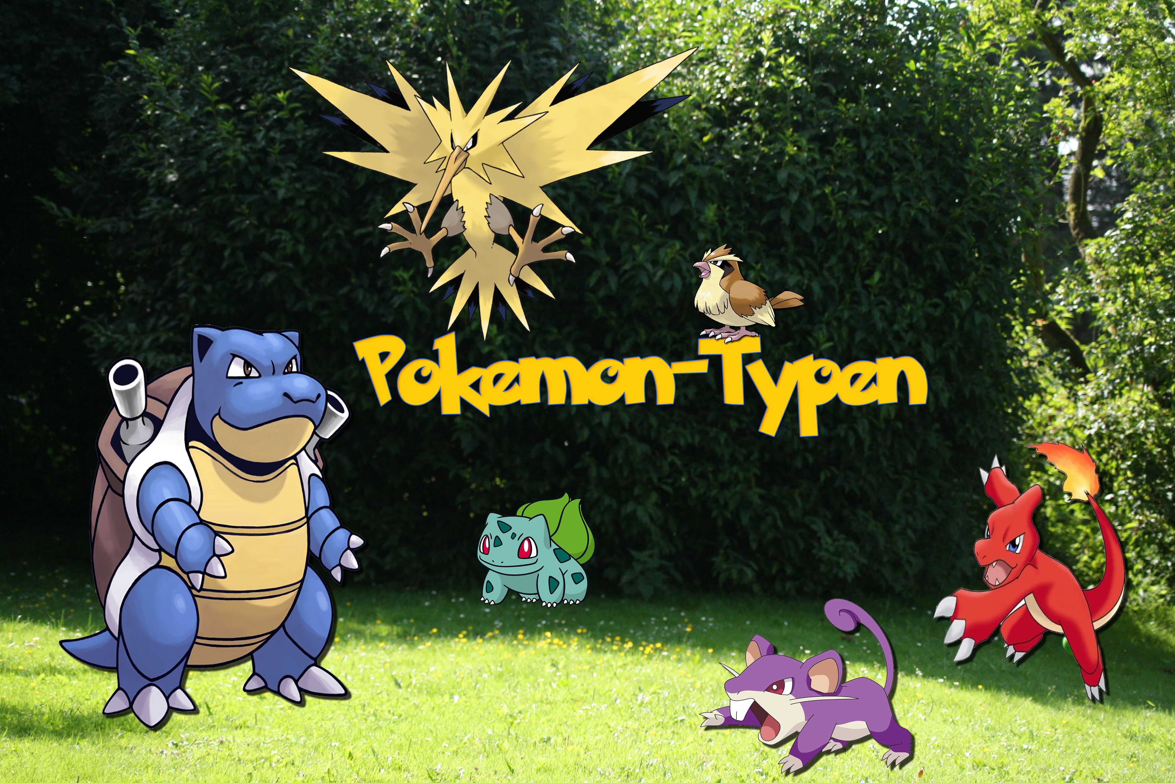 Typen Pokemon